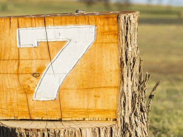Numărul 7