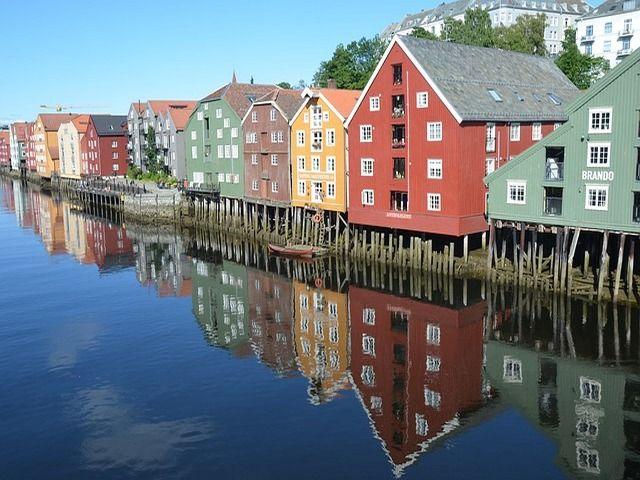Studii gratuite la o universitate din Norvegia pentru studenții anului trei și doctoranzii de la UTM.